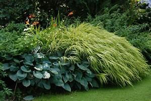 Gräser Im Garten : gr ser spielen auch im garten von beth chatto eine gro e ~ Michelbontemps.com Haus und Dekorationen