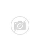 нарушение незаконности судебных приставов при наложении ареста на имущество