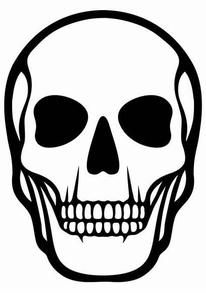 Skeleton Skull Coloring Human Printable Pages Cartoon