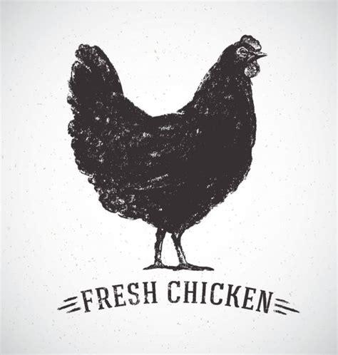 ᐈ Pollo vector de stock imágenes pechuga de pollo