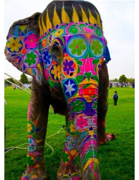 painted elephant elephants beautiful an