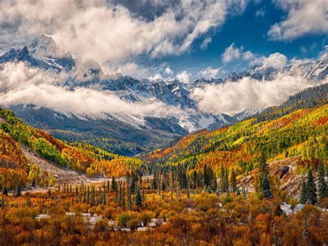 wonderful autumn landscape forest yellow white fog vapor