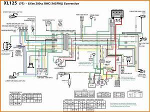 200cc Dirt Bike Wiring Diagram