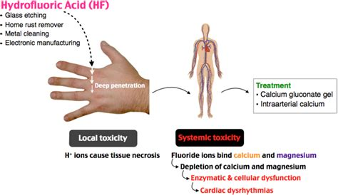Systemic toxicity may occur leading to hypocalcemia ...