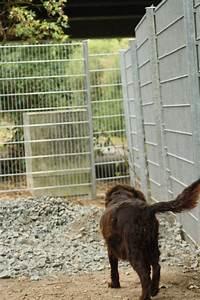 Kleiner Zaun Für Hunde : bauma nahmen in der krambambullizentrale krambambulli jagdhundhilfe e v ~ Frokenaadalensverden.com Haus und Dekorationen