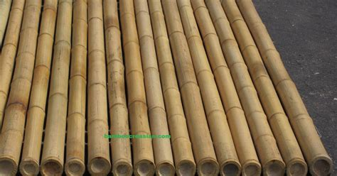 Quality Bamboo and Asian Thatch: ''Bamboo'' panels for