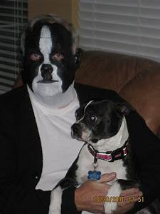 Boston-terrier-costume-2