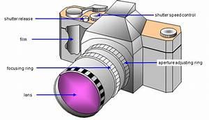 Basic Diagram Of Digital Camera Parts  U2022 Downloaddescargar Com