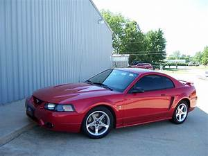 Cobra09Snake 2001 Ford Mustang Specs, Photos, Modification Info at CarDomain