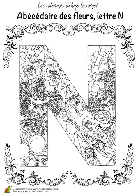 cuisine tv recettes coloriage abecedaire belles fleurs a lettre n sur