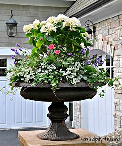 Serendipity, Refined, Blog, Summer, Urns, And, Container, Gardens, Tips, And, Tricks