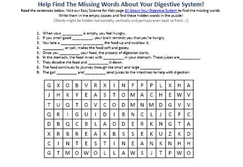 digestive system hidden words activity picture easy