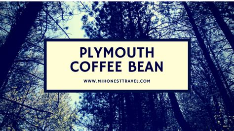 Mike vial at plymouth coffee bean, plymouth, mi, usa. Plymouth Coffee Bean- Wonderful Independent Coffee House | Coffee beans, Beans, Plymouth