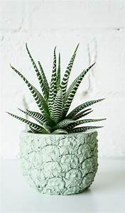 Pot En Ciment : cache pot ananas en ciment table decor hanging plants pinterest ciment pots et plantes ~ Teatrodelosmanantiales.com Idées de Décoration