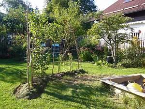 Alternative Zu Gras Garten : alternative zu lebendem weidenzaun mein sch ner garten forum ~ Markanthonyermac.com Haus und Dekorationen