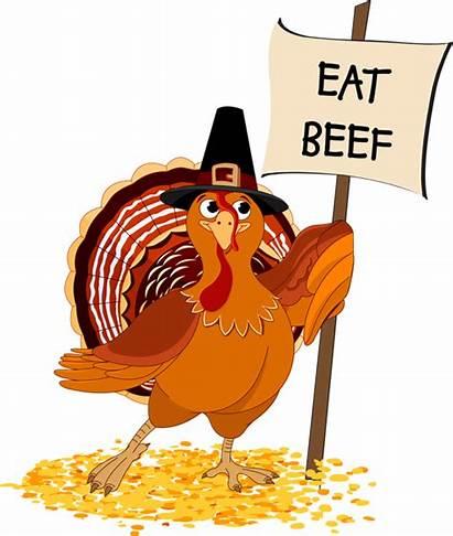 Beef Turkey Eat Thanksgiving Clip Chicken Clipart