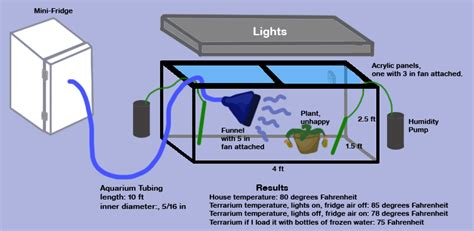 Wit End Trying Cool Terrarium With Diagrams