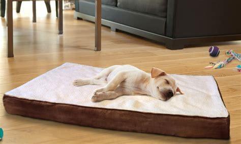 orthopedic pet beds orthopedic pet beds groupon goods