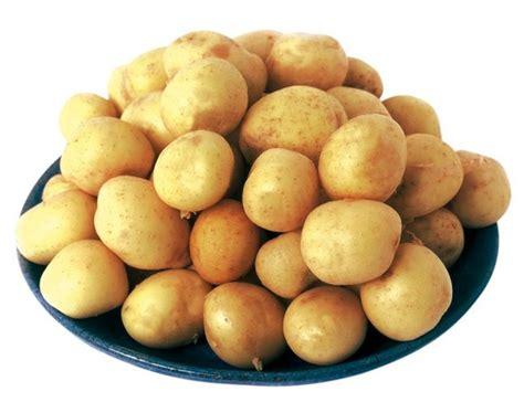 cuisiner les pommes de terre de noirmoutier la pomme de terre de noirmoutier