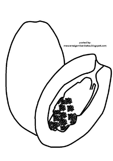 mewarnai gambar mewarnai gambar sketsa buah pepaya 1