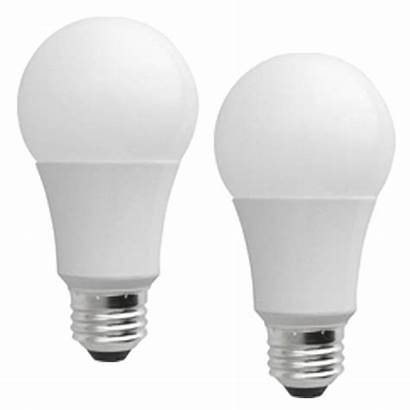 Led Bulbs Microsun Pack Lamps Tattoo