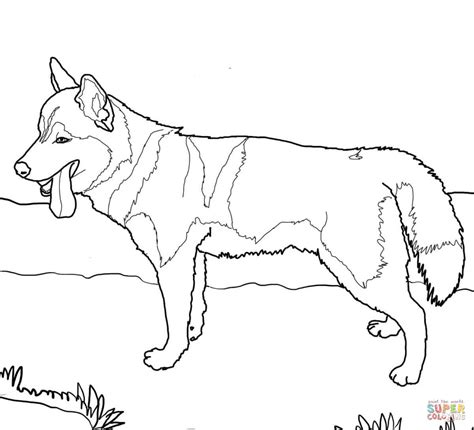 Police Dog Coloring Pages 2590263