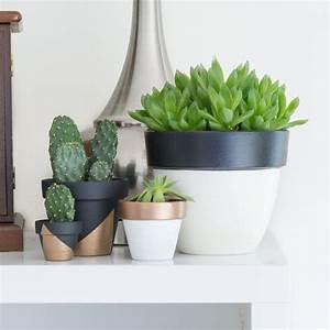 Pot De Fleur En Terre Cuite : diy comment donner une allure moderne aux pots de fleurs ~ Premium-room.com Idées de Décoration