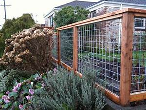 The, Most, Frequently, Asked, Questions, About, Garden, Fences