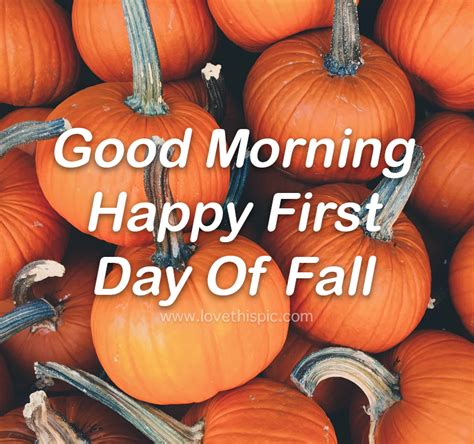 Bundle Of Pumpkins - Good Morning Happy First Day Of Fall ...