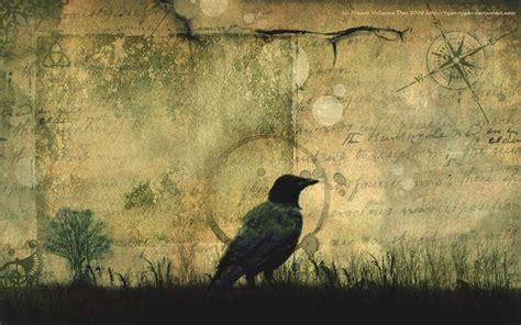 crows    key  understanding alien intelligence