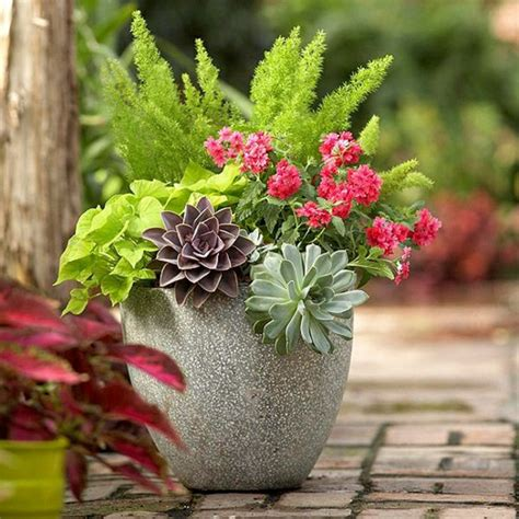 Garten Ideen Herbst by Blumenk 252 Bel 63 Wundersch 246 Ne Beispiele Archzine Net