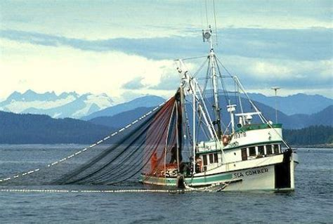 types  fishing vessels
