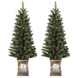 battery operated set of 2 pre lit 4ft 120cm frosted xmas pathway trees