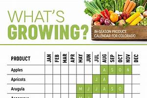 Seasonal Fruits And Vegetables Chart New York What 39 S Growing In Colorado Produce Calendar Infographic