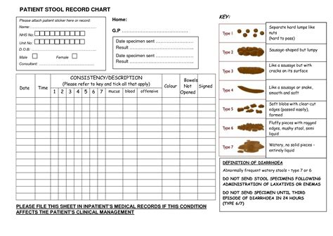 Bowel Movement Shape Chart Pictures To Pin On Pinterest