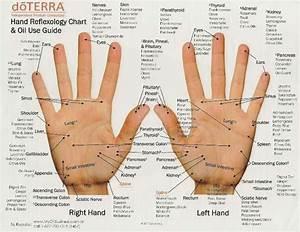 Hand Reflexology Chart  U0026 Oil Use Guide  Infograf U00eda