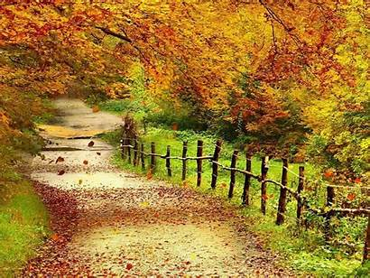Scenery Wallpapers Autumn Wallpapers13