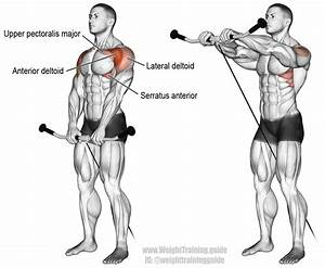 Cable Front Raise Exercise Instructions And Video