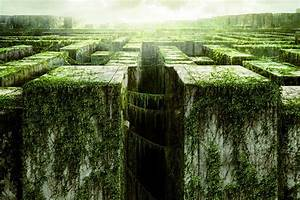 The Maze Runner Movie Wallpapers Archives - HDWallSource ...