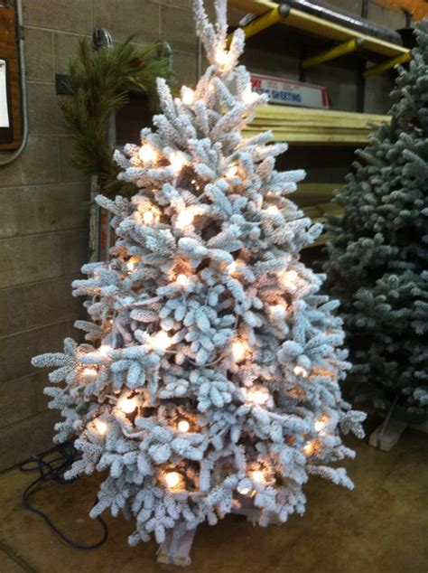 flocked christmas trees josephs nursery monessen pa