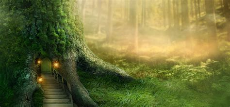 fairy forest fairy forest dream background image