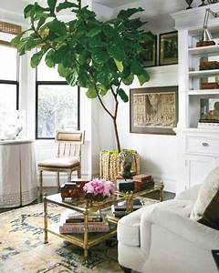 Bäume Für Drinnen : pin by on for the home pinterest wohnzimer ~ Michelbontemps.com Haus und Dekorationen