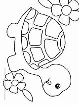Coloring Turtle Popular sketch template