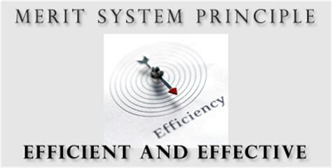 merit systems protection board merit system principles
