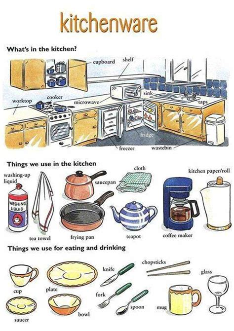 kitchen vocabulary  objects illustrated