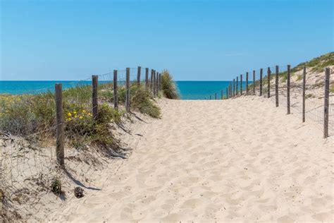 chambres hotes cap ferret plage des dunes au cap ferret photos activités commerces