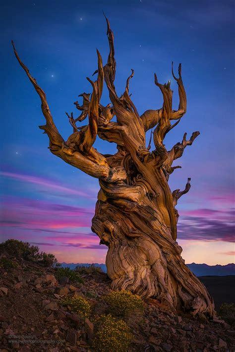 Fantastic Landscape Photography Makes Earth Look Like