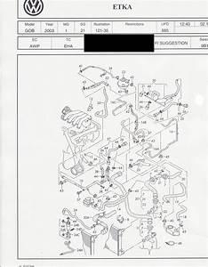 2001 Vw Jetta Auto Transmission