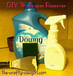 Homemade Wallpaper Removal