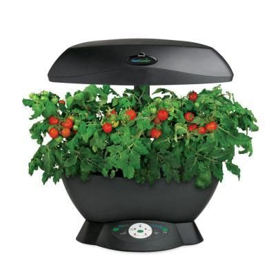 indoor garden depot miracle gro aerogarden 6 indoor garden with gourmet herb